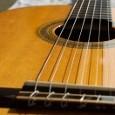 Konzert-Gitarren