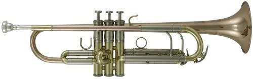 ROY BENSON B-Trompete TR-302G Pro Serie
